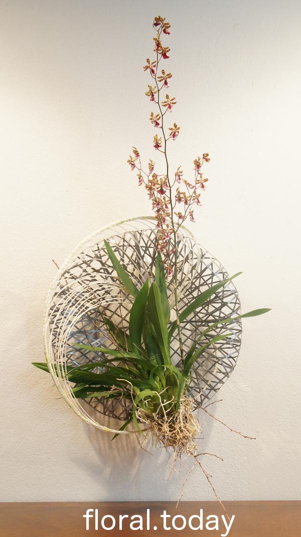 Wreath Complete 4