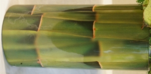 Bamboo FMC 3001