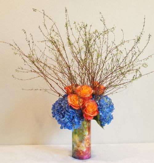Rainbow Sleeve - Blue Hydrangea - Free Spirit Roses - Japanese Spirea