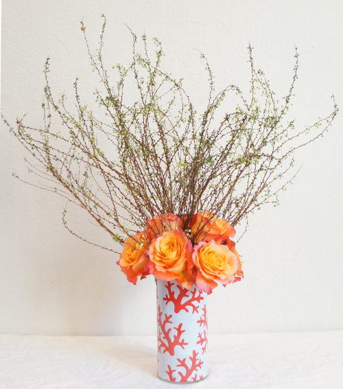 Red Coral Sleeve - Free Spirit Roses - Japanese Spirea